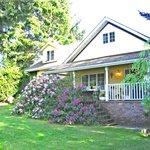 Spring Garden & Front Porch