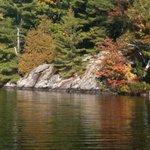 Otter Lake!