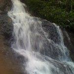 Kondalilla Falls, Mapleton