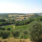 Beautiful views of Tuscany