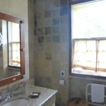 Lage enough functional shower room.