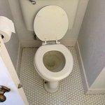Yucky Toilet