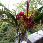 Conrad's spectacular flower arrangements....