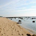 Stranden ved lavvande