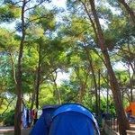 Tente dans le camping