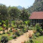 le jardin et la terrasse pour les repas