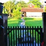 Cute wooden gate