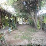 el patio principal