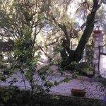 jardín con hamacas y lugar de descanso