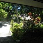 вид из Garden villa