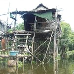 Stilted house