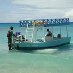 Glass bottom boat to see Turtles