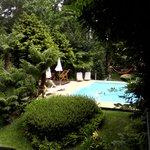 Vista da piscina                  (57888695)