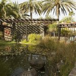 The small pond and outdoor lounging areas