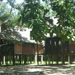 The cabins at the lodge