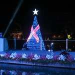 The Christmas tree with the Breast Cancer lightings