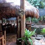 Cafe Kamarikutan Foto