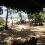 Zimmeraussicht zum Strand