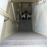 Those steps ... OMG