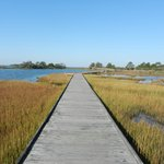 Life of the Marsh Trail October 2012 (before Sandy)