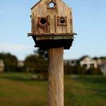 A birdhouse on the grounds of the Inn
