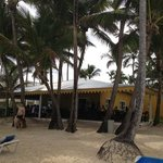 ristorante/bar sulla spiaggia