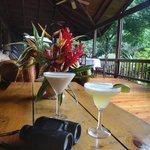 Excellent drink après une journée de randonnée en forêt