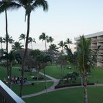 View of grounds from the lanai