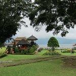 garden view to lake