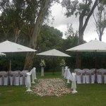 Nice garden ceremony