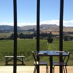 Outlook over the vineyard