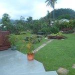 Riverside-backyard