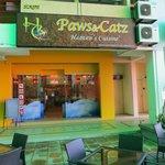 Foto de Paws & Catz Cafe