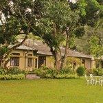 Ancoombra Tea Estate Bungalow Foto