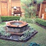 Central patio garden