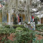 Tybee Island Inn Tropical Garden