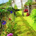 Deluxe room gardens