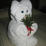 Cute little towel animal
