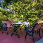 Sunny afternoon tea area