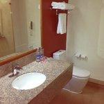 Hotel Bathroom -- before the flood!