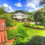 Mavis's Garden