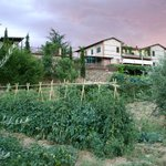 Photo of Agriturismo La Pietriccia