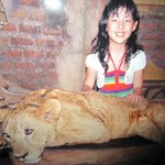 With a Lion