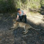 MIt den Geparden spazieren in Tenikwa