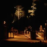The outdoor Forest Theater, surrounded by nature, magical...