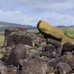 Downed moai tell the history of conflict among the tribes and natural disaster