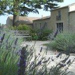 La Gravière-Maison d'hôtes et Spa à Vertheuil