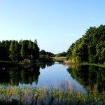 Edward Medard Regional Park
