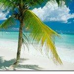 Vista de la Playa White Sands