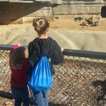 my girls at the zoo